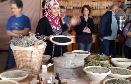 New-bedouin-woman