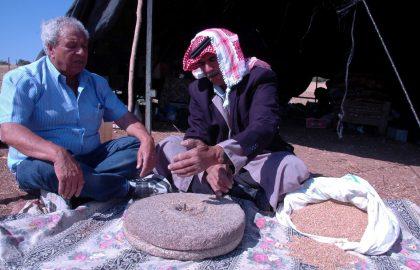 Desert Agriculture and Shepherding